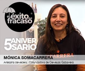 El exito del fracaso - Monica Somacarrera